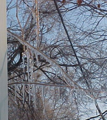 picture of ice storm aftermath