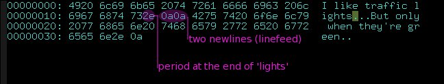 Unix newlines